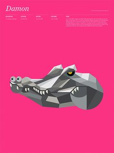 Animals in New York by MGMT. Design | Inspiration Grid | Design Inspiration