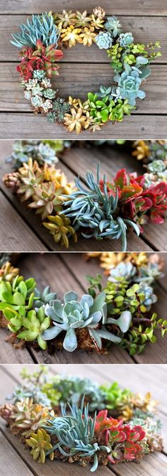 DIY Succulent Wreath I don't really want a wreath maybe another shape but here's how and I can adapt it maybe around a mirror