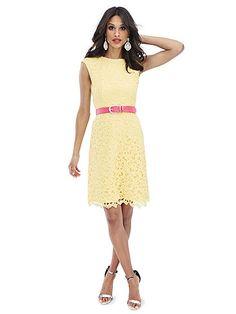 Scallop-Hem Lace Dress - New York & Company