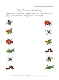 Insects Worksheets for Kindergarten. 20 Insects Worksheets for Kindergarten. Printable Preschool Worksheets, Free Kindergarten Worksheets, Preschool Kindergarten, Worksheets For Kids, Preschool Ideas, Insects For Kids, Bugs And Insects, Bug Activities, Toddler Activities