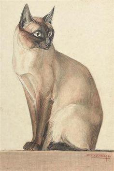 Jacques CARTIER (1907-2001) Chat siamois Fusain et sanguine sur papier