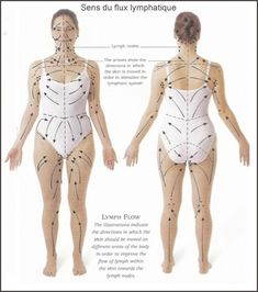 Lymph drainage pattern for skin brushing- detox, drop weight, and cure cellulite naturally. I am a new fan to skin brushing. Even if it doesn't do all those things above, my skin looks and feels great and I enjoy the mini-massage every day. Fitness Workouts, Dry Brushing Skin, Dry Skin, Dry Brushing Benefits, Smooth Skin, Alternative Health, Health And Beauty Tips, Massage Therapy, Ayurveda