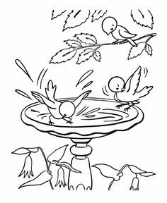 Spring Birds Coloring Pages