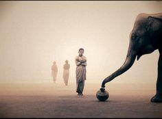 """Выставка """"Пепел и снег"""". Фотограф Грегори Колберт"""