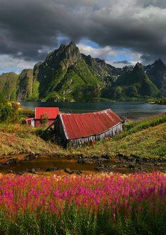 Noruega - Summer Fjord, Svolaer, Norway
