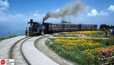 Darjeeling Himalayan Railway standing at Batasia Loop, Darjeeling, West Bengal, INdia. This railway is a UNESCO world heritage site. Heritage Railway, Train Rides, Train Trip, Live Train, India Tour, Hill Station, Travel Channel, Dream Vacations, Vacation Travel