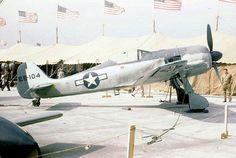 Focke-Wulf Fw190G-3 in U.S. colors