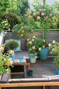 gradina-din-balcon-small-balcony-design-ideas-2