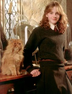 Crookshanks with Hermione (Emma Watson) in Harry Potter and the Prisoner of Azkaban Harry Potter World, Fantasia Harry Potter, Mundo Harry Potter, Harry James Potter, Harry Potter Cast, Harry Potter Universal, Harry Potter Characters, Lord Voldemort, Fans D'harry Potter