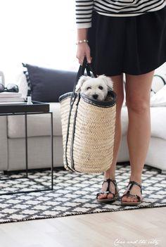 Dog in a TineK summerbag ;)  http://charandthecity.indiedays.com/2013/06/20/tinekn-korikassi/