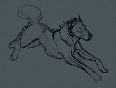 sketchy wolfy 2 by ArtisticJackal on DeviantArt Art Poses, Drawing Poses, Animal Sketches, Animal Drawings, Wolf Poses, Wolf Sketch, Wolf Artwork, Sketches Tutorial, Creature Drawings