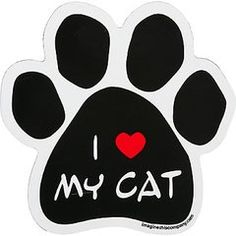 Cat Breeds & Specialty Cat Magnets