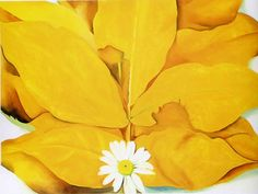 From Art Institute of Chicago, Georgia O'Keeffe, Yellow Hickory Leaves with Daisy Oil on canvas, × cm Georgia O'keeffe, Alfred Stieglitz, Wisconsin, New Mexico, Georgia O Keeffe Paintings, New York Art, Wow Art, Art Institute Of Chicago, Ancient Art