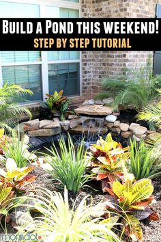 Learn how to build a pond in your garden or backyard, easy step by step tutorial with pictures on DIY pond with waterfall