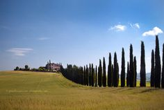 Tuscany, my safe place in my mind