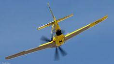 Precious Metal P-51D (XR)