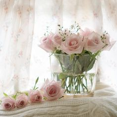 Love flowers - especially pink roses Love Rose, My Flower, Pretty In Pink, Beautiful Flowers, Pretty Roses, Perfect Pink, Beautiful Days, Pink Roses, Pink Flowers
