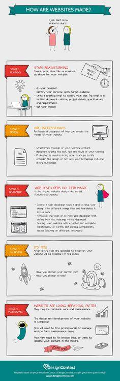 Website design and website development infographic