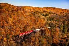 Take This Fall Foliage Train Ride Through Kentucky For A One-Of-A-Kind Experience