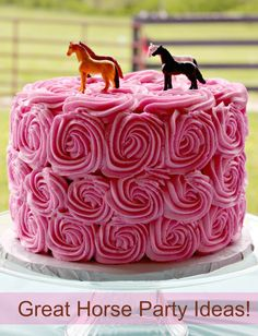 Horse cake and party ideas. Super cute...repinned with thanks by DressageWaikato.co.nz