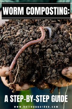 Worm Composting - A Step By Step Guide Worm composting, or vermicomposting, uses worms to create compost for your garden. It's easy, inexpensive, and great for your garden. Here's your step by step guide to get started on your very own worm compost! Compost Soil, Garden Compost, Worm Composting, Garden Soil, Garden Care, Garden Beds, Composting Methods, Garden Cottage, Indoor Gardening Supplies