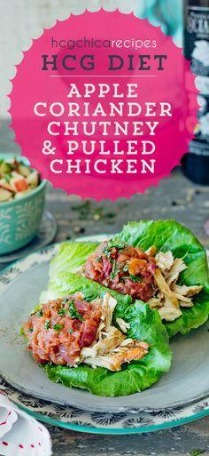 Phase 2 hCG Diet Recipe: Apple Coriander Chutney & Pulled Chicken - hcgchicarecipes.com - Protein + Fruit Dish