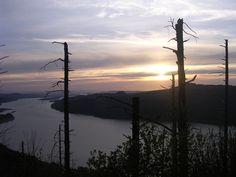 Hikes near Portland: Angels Rest Hikes Near Portland, Lungs, Go Outside, Oregon, Angels, Rest, Hiking, March, Shape