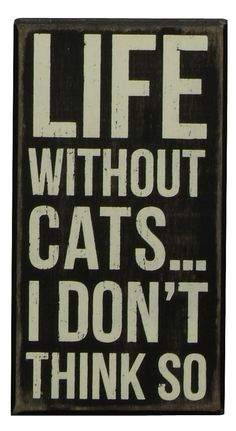 Cat sign. Life without cats... I don't think so.