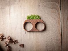 Mr. Lentz's Hand-Carved Wooden Jewelry Double as Mini-Planters