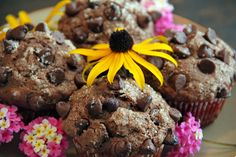 Mocha Choc Chip Oatmeal Muffins 1 3/4c Flour 2 tsp Baking Powder 1/2 tsp baking Soda 1/4 tsp Salt 3 Tbsp Cocoa 3/4 c Sugar 1 c Semi-Sweet Choc Chips 1 c Oatmeal 3/4 c Milk 1/4 c Mocha Coffee 1/3 c Veg Oil 1 Egg 1 tsp Vanilla Sift dry ingredients together in a bowl. Mix all wet ingredients. Add wet ingredients to dry and stir till moistened. I wanted big muffins so I squeezed all batter into just 12 muffin cups. Tops with some extra chocolate chips and raw sugar. Baked 18 minutes at 400…