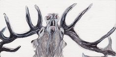 Stag, Watercolor
