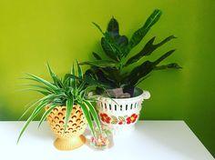 Planter Pots, Sweet Home, House Beautiful