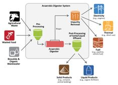 Anaerobic Digestion System Components, courtesy of U. Ampk Activator, Anaerobic Digestion, Life Extension, Waste Disposal, Interesting Information, Organic Fertilizer, Lose Weight Naturally, Lower Cholesterol, Food Waste