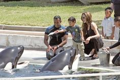 Angelina Jolie took sons Maddox and Pax to feed killer whales during a trip to France in March 2007.
