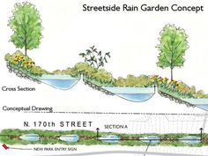 Street Side Rain Garden Concept - if we have a hill...