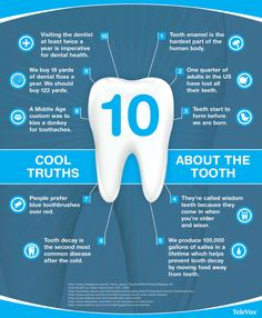 10 #Truths about the #Tooth - #dental #teeth
