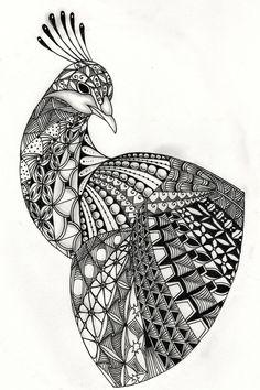 Ben Kwok Peacock Template   Flickr - Photo Sharing! Doodle Art Drawing, Zentangle Drawings, Mandala Drawing, Zentangles, Art Drawings Sketches Simple, Bird Drawings, Mehndi, Henna, Mandala Art Lesson