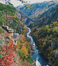 Photo gratuite: Rivière, L'Eau, Ruisseau, Nature - Image gratuite sur Pixabay - 690949