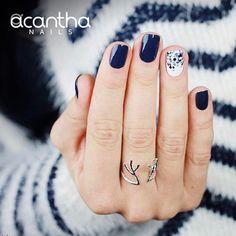 No busques más, con #AcanthaNails tus uñas se verán hermosas durante 21 días, ¿qué esperas?, ¡es el producto perfecto! Contáctanos en Panamá al tel. 507 62043932 ¡te vas a enamorar! #AcanthaMeEncanta #AcanthaLover #notd #nails #bling #manicure #glitter #silverglitter #manimonday #pretty #nailart #mani #polish #glam #rednails #beautyblogger #instabeauty