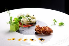 Gastronomy Molecular The Best Recipes is just here !!