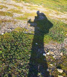 Varangerhalvøya Nasjonalpark