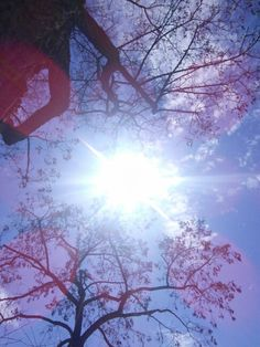 #sun #lenflare #spring
