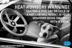 HEAT ADVISORY WARNING!  Leaving a dog, cat or child in a hot car will result in your windows being smashed with a brick.