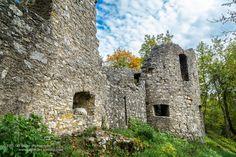 https://flic.kr/p/yx4f2T | Sleeping | Mika hat sich ein lauschiges Plätzchen mit Aussicht auf der  Burg Honberg in Tuttlingen rausgesucht.