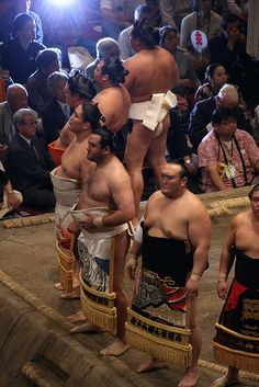 Does my bum look big in this?  Sumo wrestlers  by Dani Simmonds.