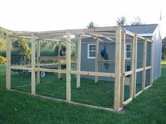 I'm getting ready to start build my first peacock coop. Does anyone have any suggestions should...