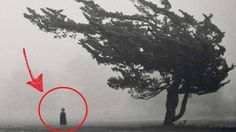 Top 10 creepy photos found on line