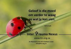 Wellness in Life - Wholeness in Leadership Victim Support, Legal Advisor, Business Advisor, Pretoria, Afrikaans, Trauma, Helping People, Counseling, Leadership