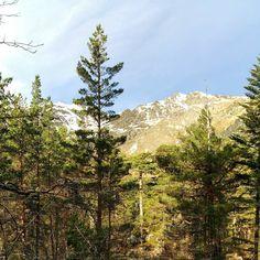 #cauterets #montagne #neige #pontdespagne #nature #arbres #paradis #tranquil #beau #magnifique #heaven #midipyrenees #cielbleu #amazing #landscape #landscapeaddict #landscape_lovers by adeline.m.photography
