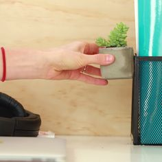Magic Magnetic Planter